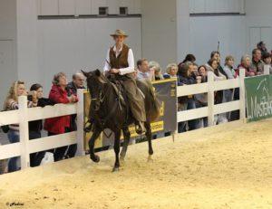 Expo Pferd und Jagd 2015 photo: N. Schumacher