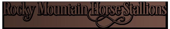 Rocky Mountain Horse Stallions