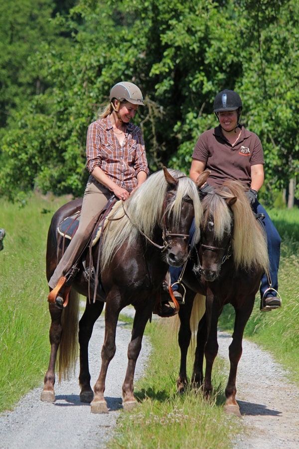Rocky Mountain Horses - Hof Hählgans